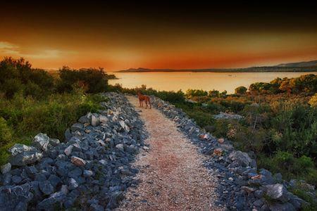 Sachsenhauser Sandra 500px Murter Island Croatia